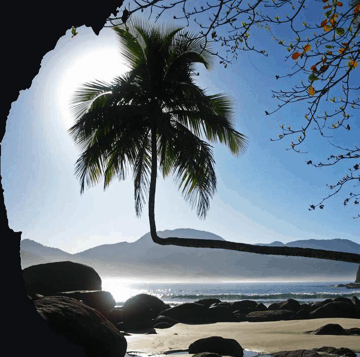 Livyd - Angra dos Reis - Rio de Janeiro - RJ